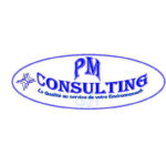 PM Consulting Logo